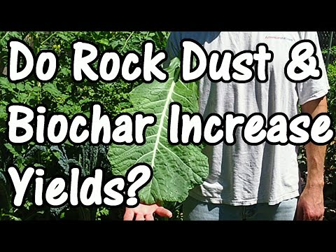 Do Rock Dust & Biochar Increase Crop Yields? Field Trial Yield Results