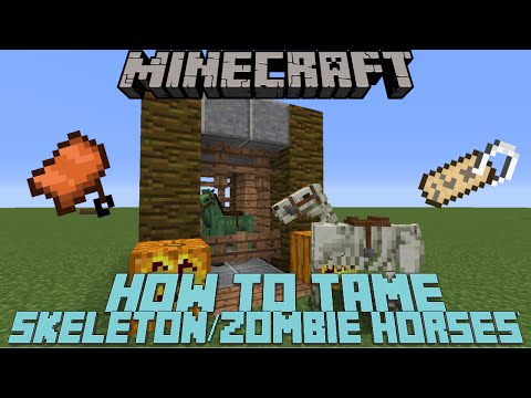 How To Tame/Ride A Skeleton Horse & Zombie Horse In Minecraft 1.10, 1.11 & MCPE