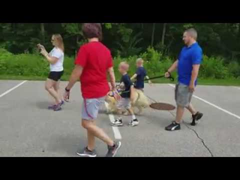 Walking With Autism Service Dog Tethered