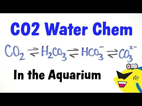 Aquarium CO2 Water Chemistry
