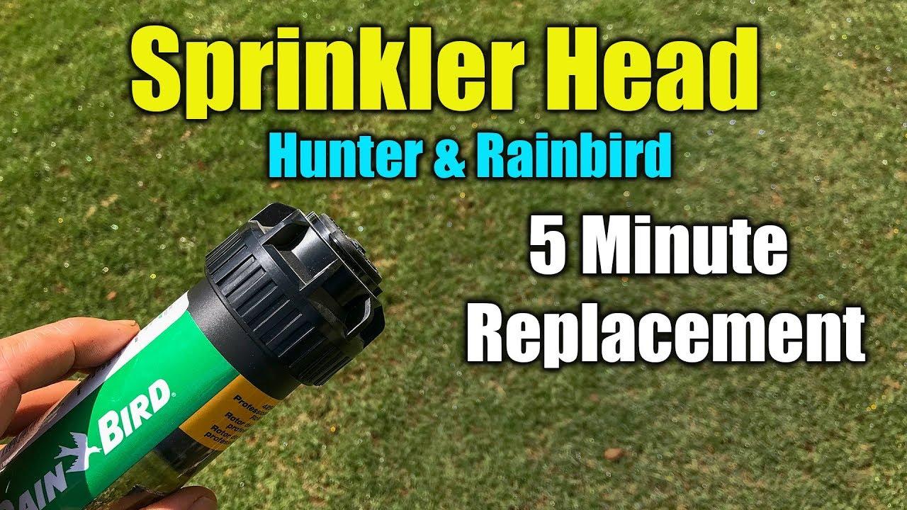 Replace Sprinkler Head - RainBird and Hunter