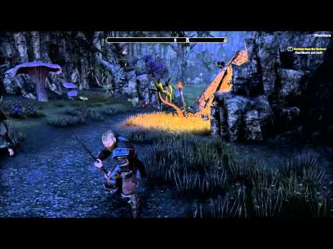 The Elder Scrolls Online - Botting Example