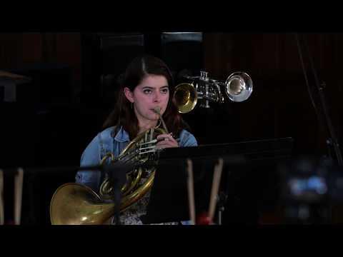 Symphonova Brass Instrumental Loudspeakers