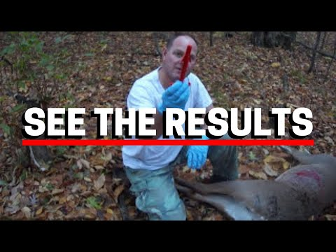 How To Gut A Deer In 5 Minutes