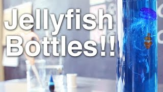 Jellyfish in a Bottle!! + Announcement!!