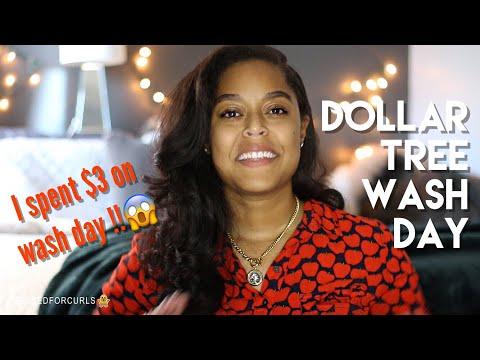 DOLLAR TREE SHAMPOO + CONDITIONER + MASQUE REVIEW 😱 | Danielle Renée