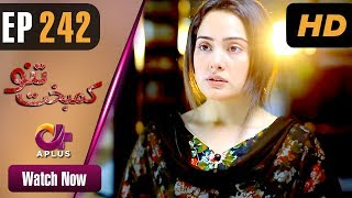 Drama   Kambakht Tanno - Episode 242   Aplus ᴴᴰ Dramas   Tanvir Jamal, Sadaf Ashaan