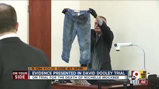 Evidence presented in David Dooley trial