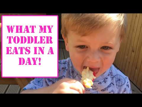 WHAT MY TODDLER EATS IN A DAY | EASY TODDLER MEAL IDEAS