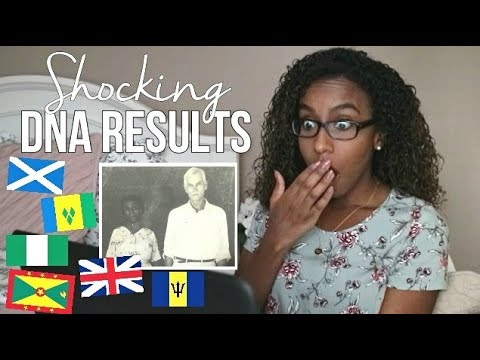 My DNA Test Results!