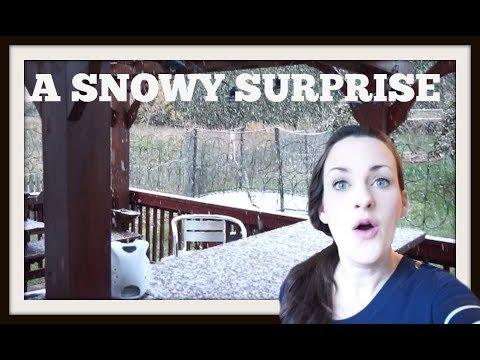 A Snowy Surprise (March 14, 2018) Vlog