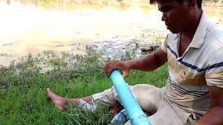 Amazing Eels trap bottle plastic - Eels Trap by using Bottle Plastic