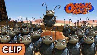 Oscar's Oasis -  Battle of the Beetles | HQ | Funny Cartoons