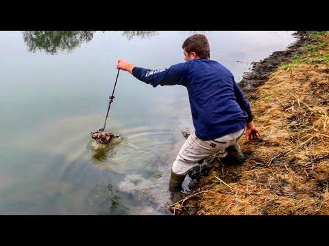 A Small Pond Nightmare : DESTRUCTIVE Muskrat Trapping 2017