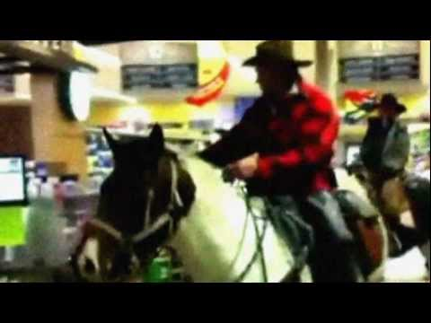 Horses Enter Starbucks and Safeway