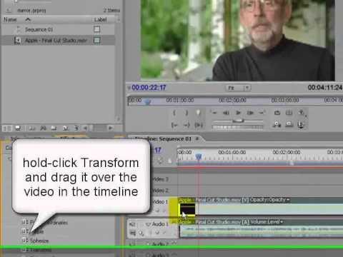 Mirror (flip horizontally) effect in Premiere Pro