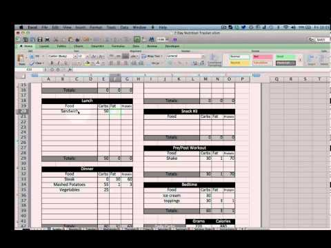Excel Nutrition Tracking Template