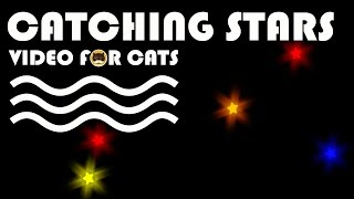 Cat Games - Catching Stars! ENTERTAINMENT VIDEO FOR CATS.
