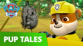 Rubble and Skye Rescue a Baby Elephant! 🐘 PAW Patrol Pup Tales Rescue Episode!