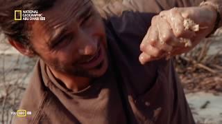 دليل هيزن للنجاة في البراري  |  في الصحراء