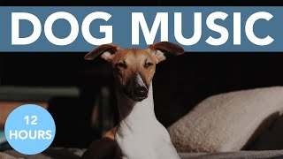 RELAX MY DOG! The BEST Calming Music for Anxious Dogs! NEW 2021!