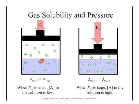 6: Gas Solubility