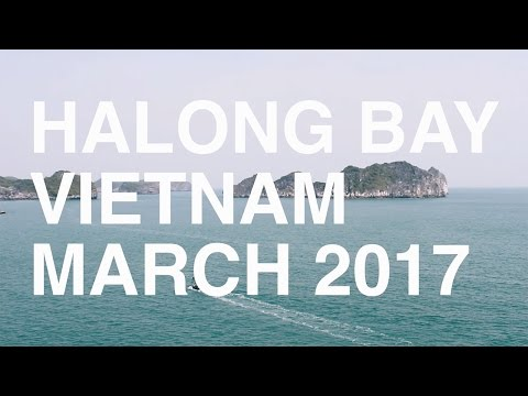 THE BAY (Cat Ba, Halong Bay, Vietnam, March 2017)