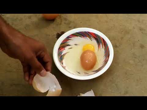 See the mysterious creation of the great Creator - Egg inside the egg !!