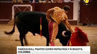 Famous bull fighter gored repeatedly in Bogota, Colombia; men intervene to distract bull