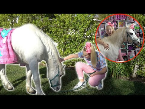 RAISING A HORSE FOR THE DAY!!!