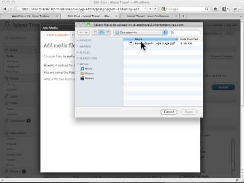 How to Inserting PDF into Wordpress Post - Wordpress Tutorilas