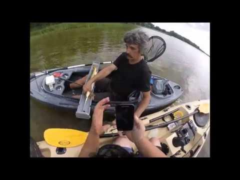 Bay Of Quinte Kayak Fishing Gar Pike