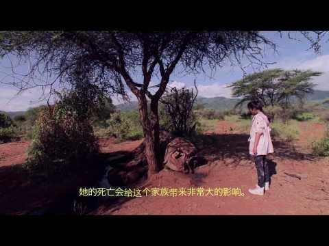 Li BingBing launches her new mini-documentary  On Elephants and Ivory Poaching