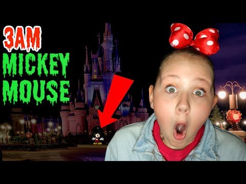 DO NOT LOOK FOR MICKEY MOUSE IN DISNEYLAND AT 3AM!! OMG SO CREEPY!!