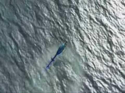 Microsoft Flight Simulator X - The Trailer
