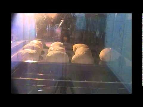 Making Pillsbury canned biscuits