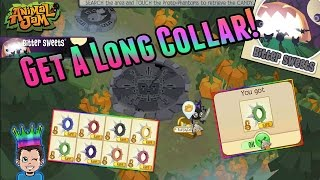 Animal Jam Adventures How Long Does It Take To Get A Good Prize