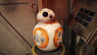 Star Wars Day   May the 4th at Disney