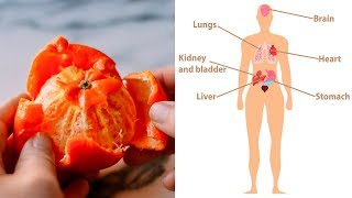 8 Health Benefits of Tangerine Peels (No.7 Shocking You)