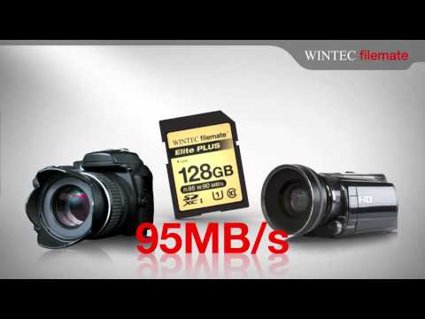 Wintec FileMate UHS-I SD Cards