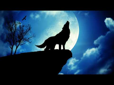 Wolf Howling Ringtone | Free Ringtones Download