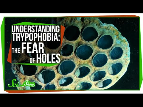 Understanding Trypophobia: The Fear of Holes