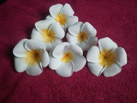 Learn How To Make Foam Plumeria Flower