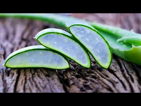 Wonderful Remedies For Chlamydia Are Aloe Vera And Neem- Natural Remedies For Chlamydia