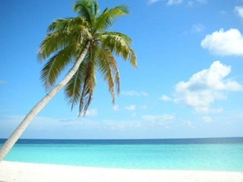 Discount holidays, packages, last-minute deals, cheap flight