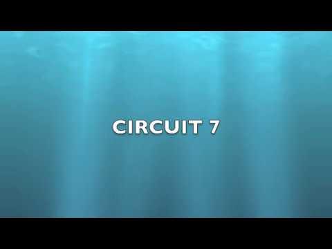 Electrical Circuit 7