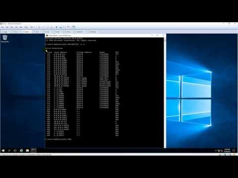 Netstat - Displays Ports opened