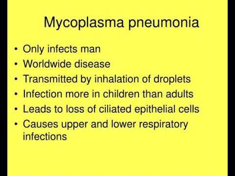 mycoplasma and ureaplasma