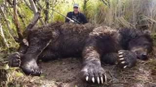 """""""Terrifying दुनिया के सबसे भयानक जानवर देखकर आप चौक जाएंगे ;Biggest animal that ever lived on Earth,"""