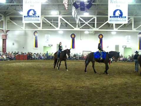 Standardbred demonstration at the Illinois Horse Fair 2009.